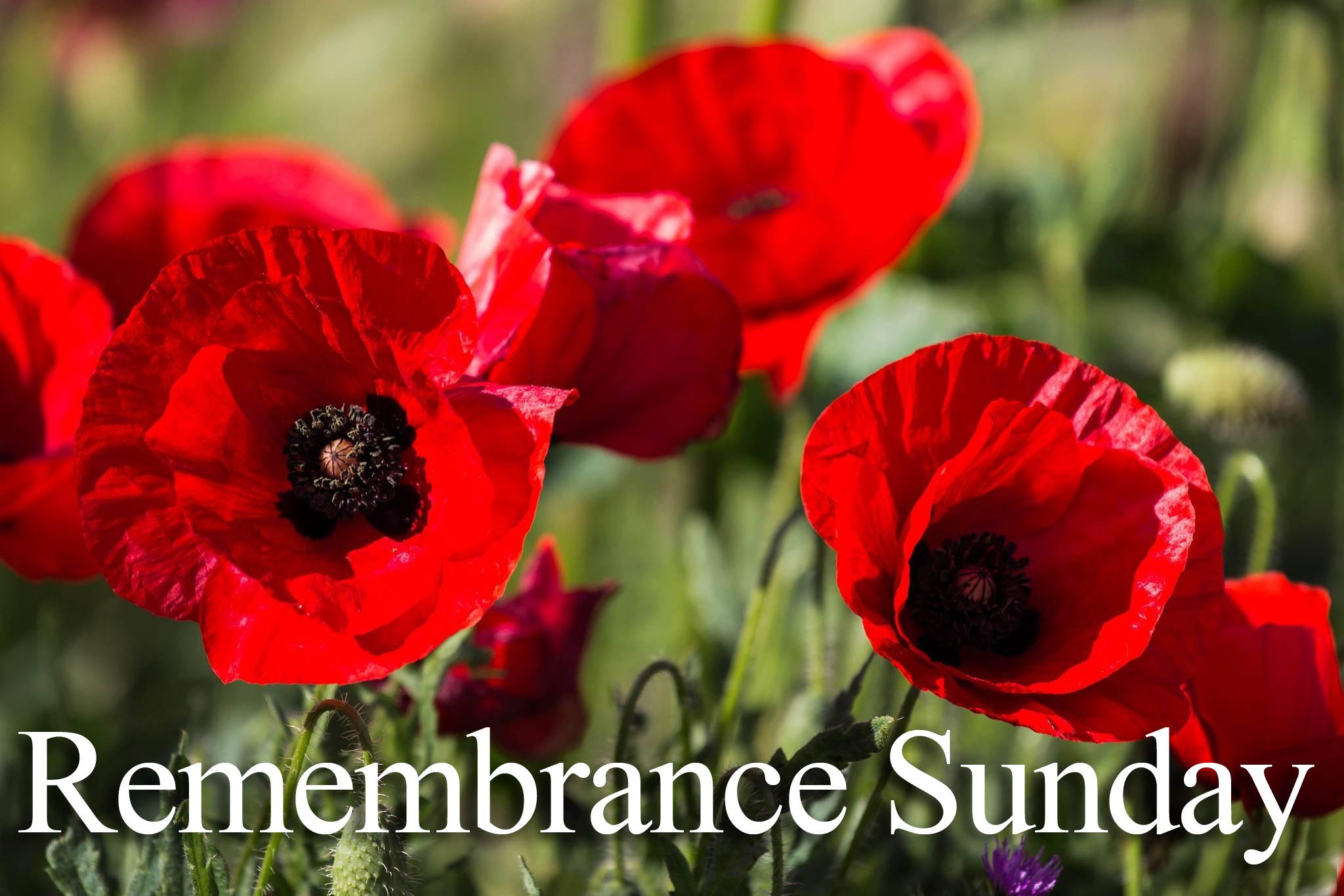 rememberance day - photo #42